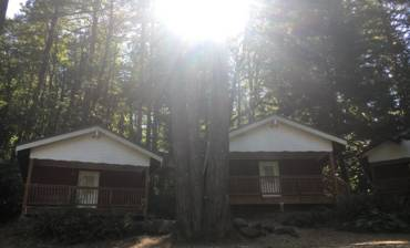 cabins-4-scaled.jpg